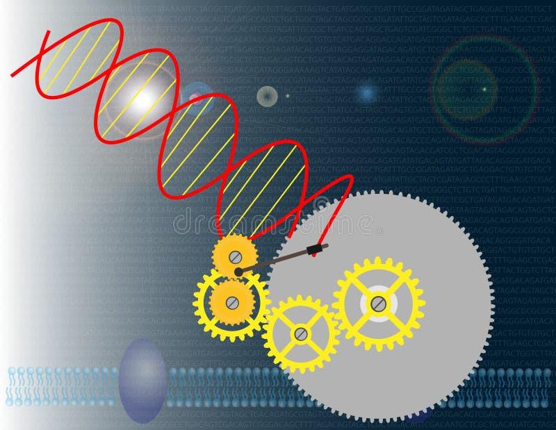 设计基因 向量例证