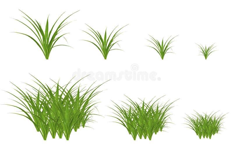 设计的绿草元素 向量例证
