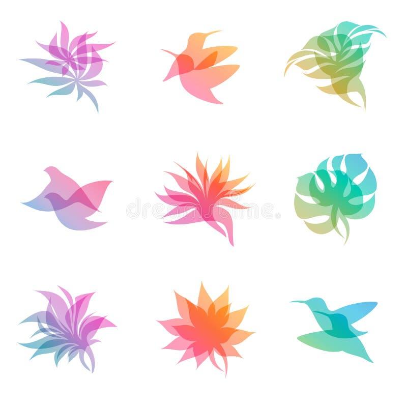 设计要素本质柔和的淡色彩 向量例证