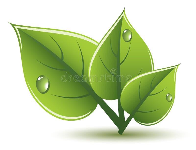 设计eco绿色留下向量 皇族释放例证