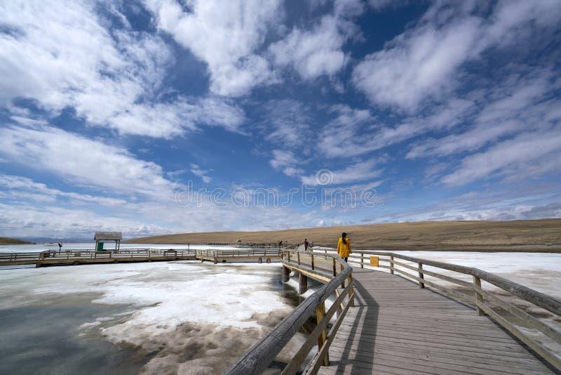 访客和天空蔚蓝白色云彩冻河黄色草在巴音布鲁克在春天 免版税库存图片