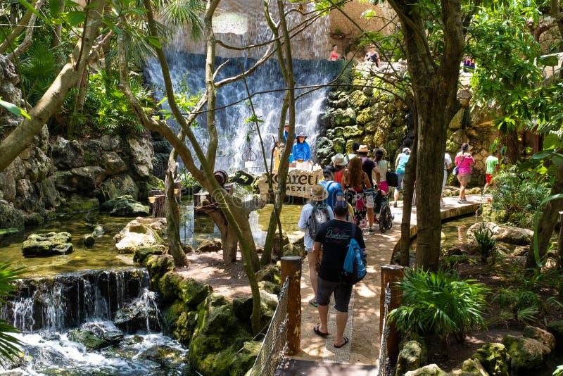 访客和瀑布在鸟舍XCaret公园的在墨西哥 库存图片