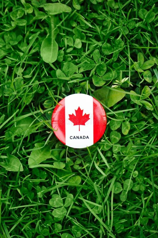 证章与在绿色森林自然背景的草的红色白色加拿大旗子枫叶外面,加拿大天 库存图片