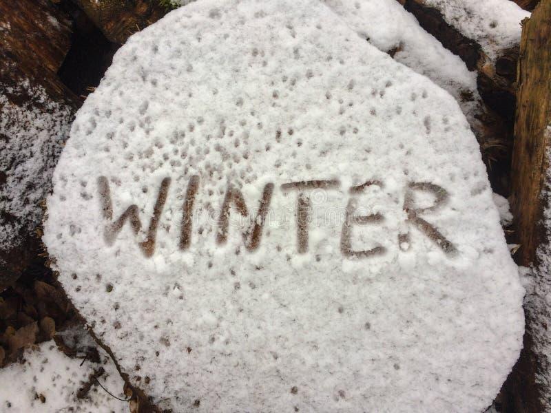 词冬天的文字在木头块的在第一雪,特写镜头以后的 免版税图库摄影