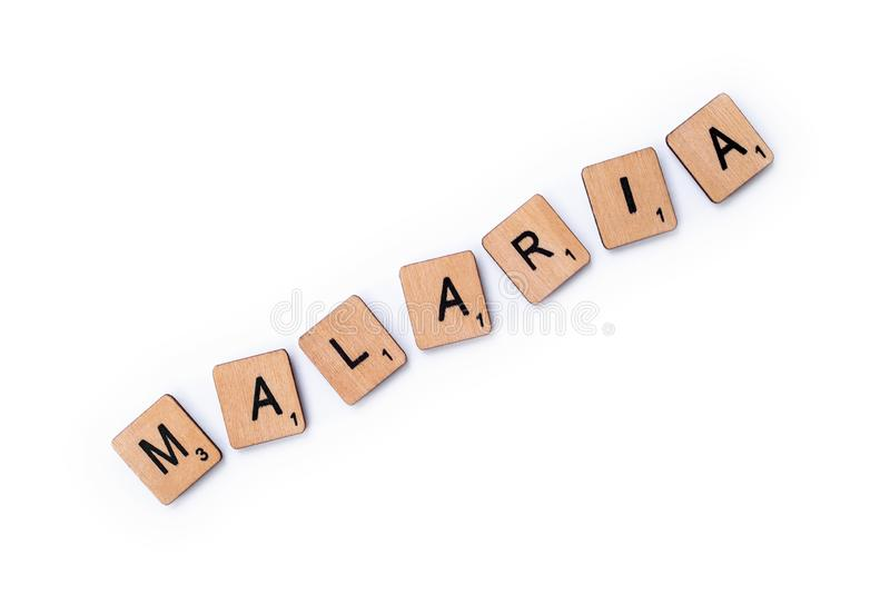 词疟疾 库存图片