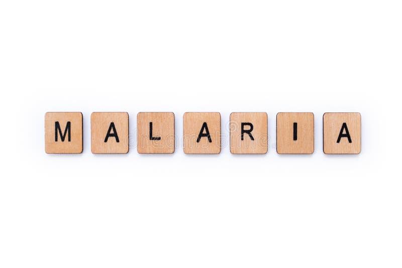 词疟疾 免版税图库摄影