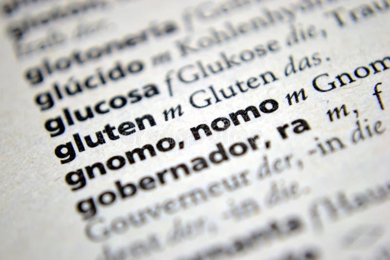 词面筋西班牙语德语字典 免版税库存照片