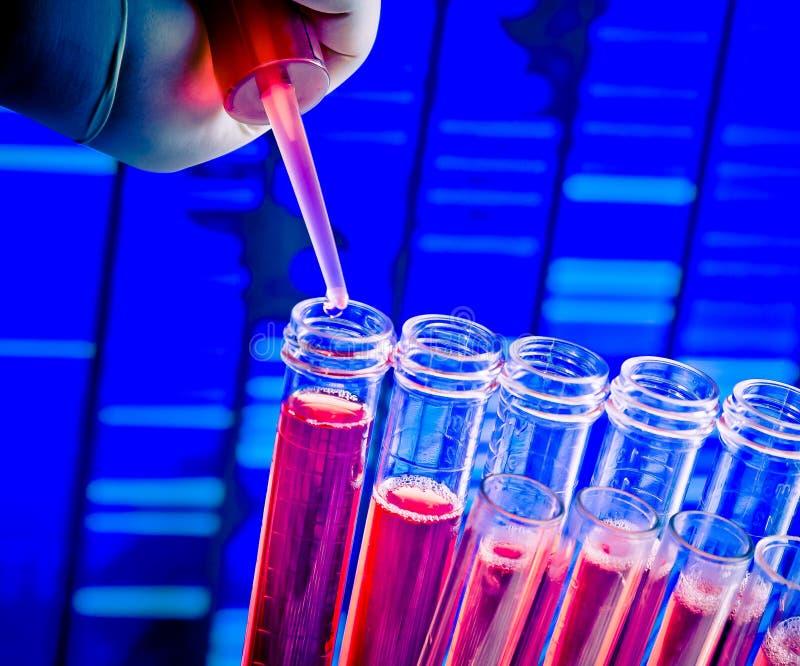 试管特写镜头有吸移管的在抽象脱氧核糖核酸序列背景的红色液体 免版税图库摄影