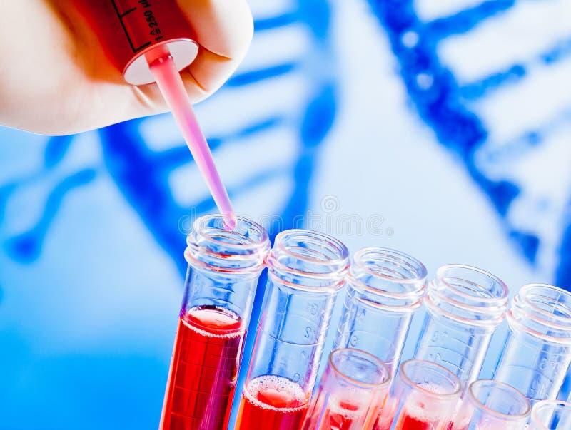 试管特写镜头有吸移管的在抽象脱氧核糖核酸背景的红色液体 免版税库存照片