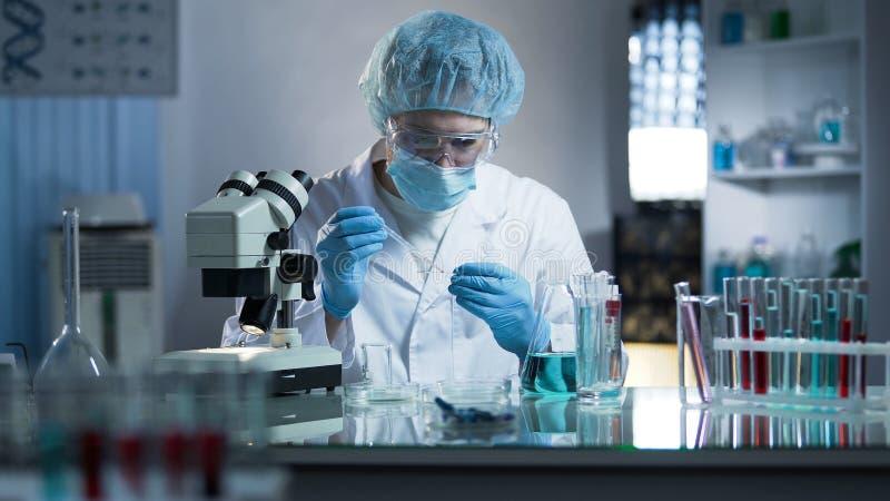 试验室工怍人员在研究克隆过程的实验室玻璃上的水滴样品 免版税库存图片