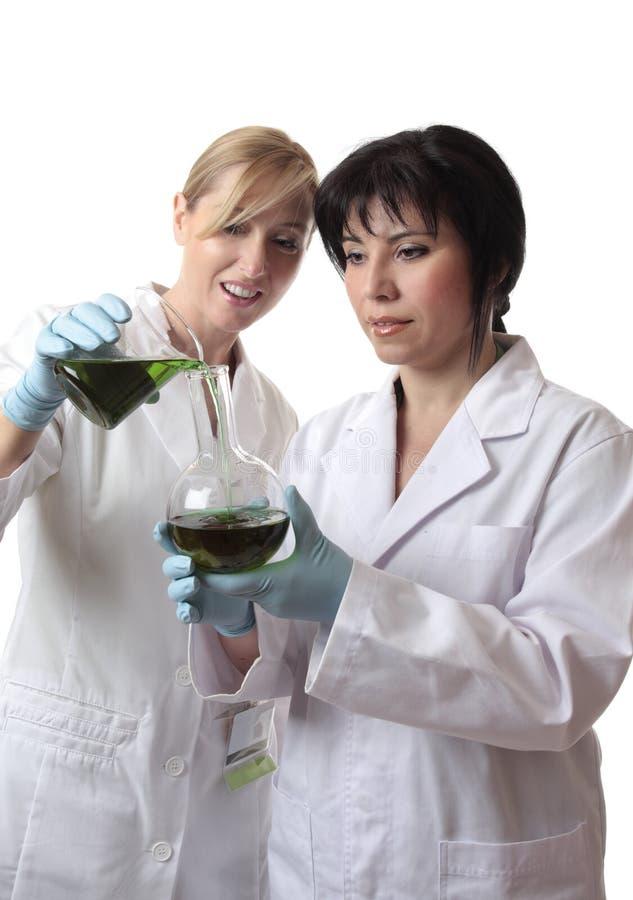 试验室工怍人员 库存照片