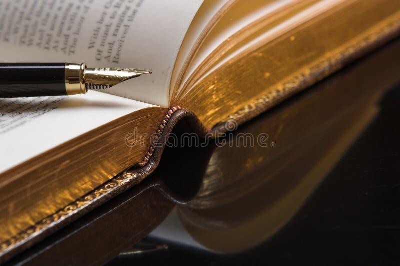 诗歌 免版税图库摄影