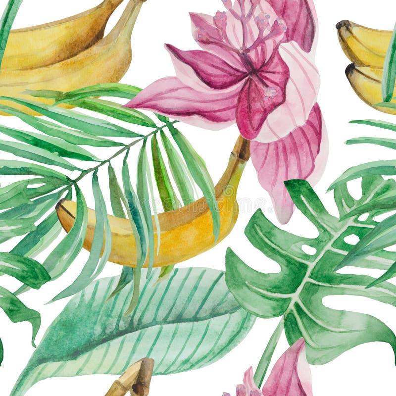 详细的棕榈叶的水彩无缝的样式, monstera,香蕉果子, 库存例证