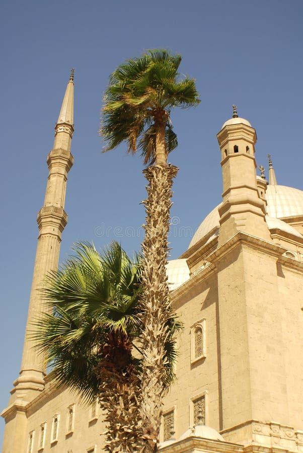 详述穆罕默德阿里清真寺  库存图片
