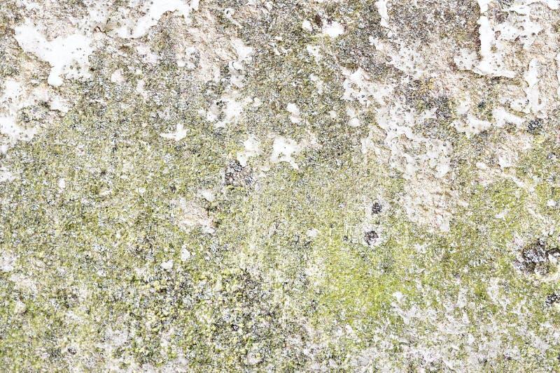 详述紧密破裂和被风化的混凝土墙表面在高分辨率的 图库摄影