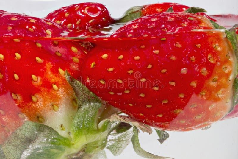 详述草莓看法蘸入水 库存图片