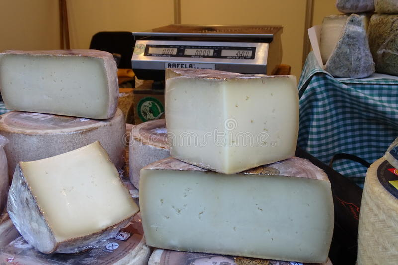 详细乳酪从商店 免版税库存照片
