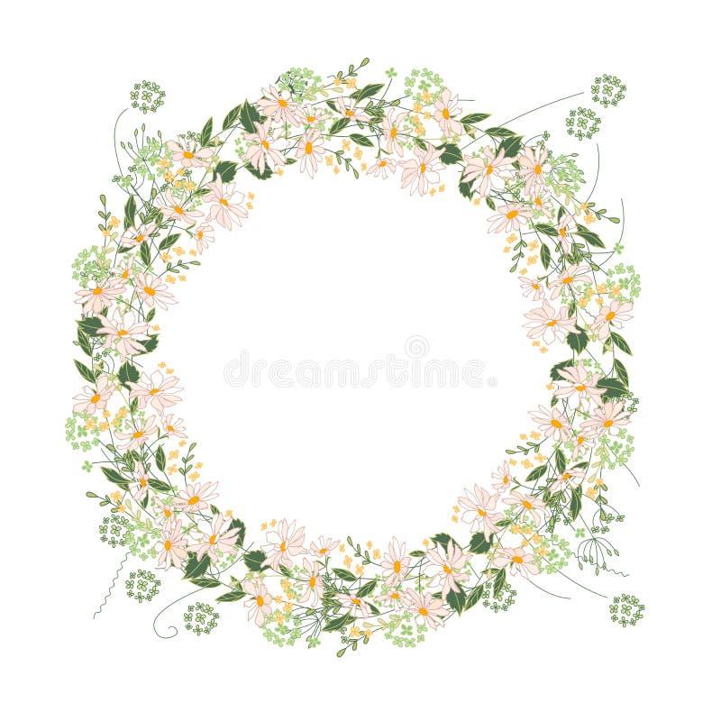 详细的等高花圈用在白色和野花隔绝的草本、雏菊 您的设计的圆的框架 皇族释放例证
