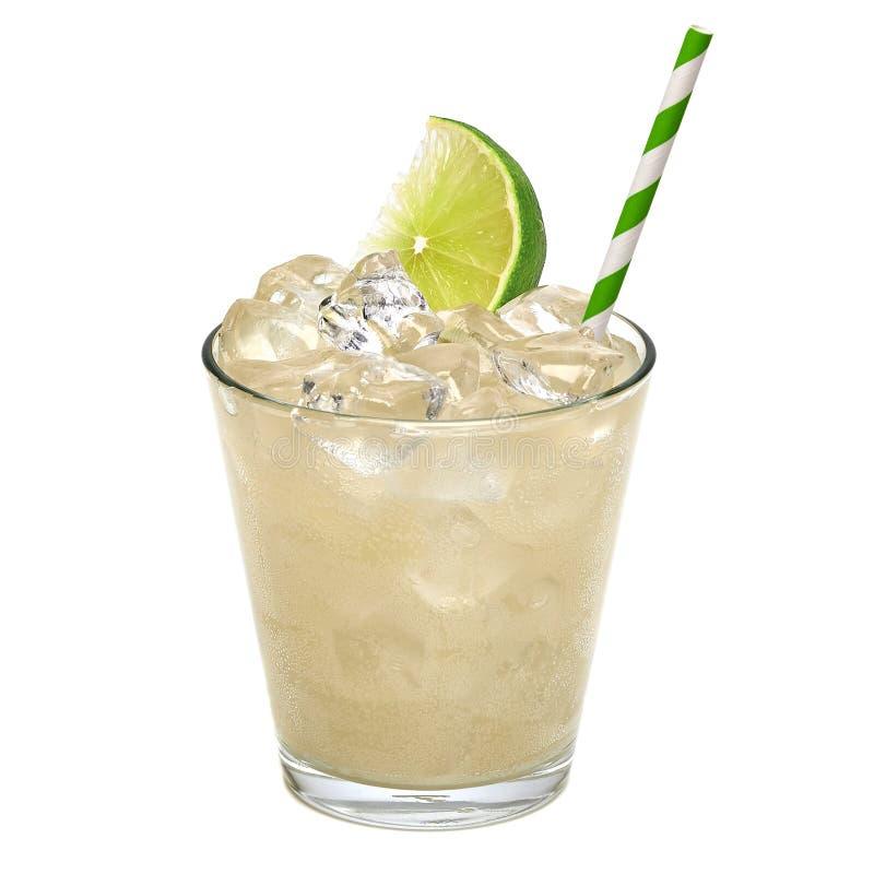 诱捕嘶嘶响或伏特加酒与柠檬 免版税图库摄影