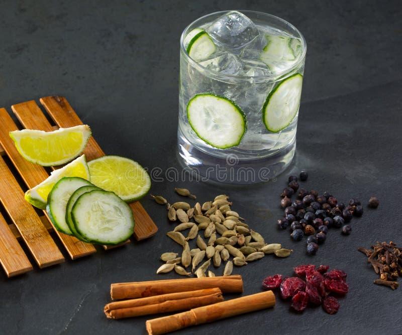 诱捕补剂鸡尾酒用黄瓜丁香豆蔻果实桂香和ju 库存照片