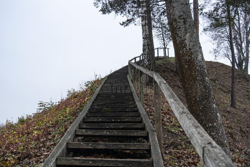 说谎在土制小山的一架笨拙的木梯子 概念性-陡峭的不便的步的运动 免版税图库摄影