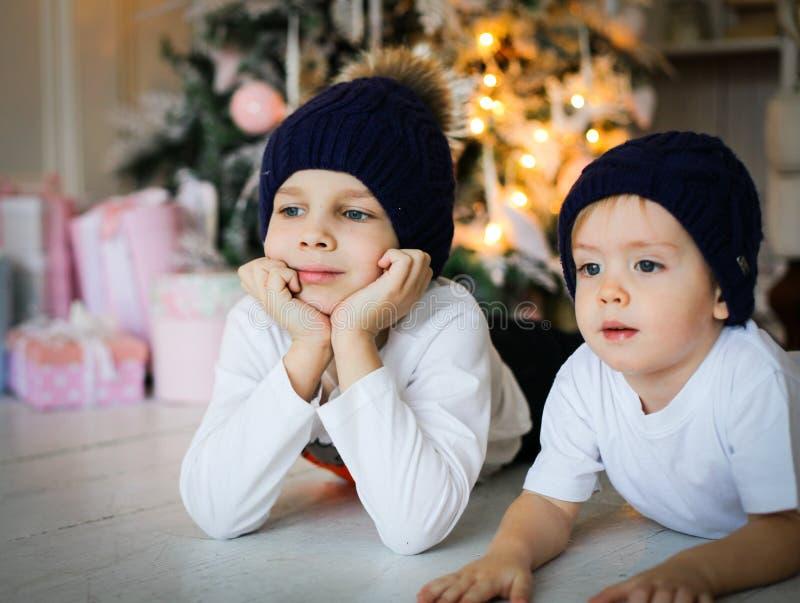 说谎在地板上的两个男孩在杉树附近 免版税库存照片