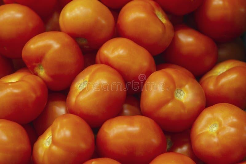 说谎在市场柜台的新鲜的红色蕃茄 红色蕃茄纹理、明亮的健康菜和vegetatarian纹理 免版税库存照片
