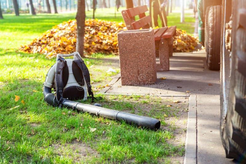 说谎在干净的草的耐用叶子吹风机在城市公园在秋天 季节性叶子清洁和撤除服务 库存照片