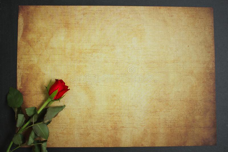 说谎在消息的葡萄酒纸的红色玫瑰 免版税库存照片