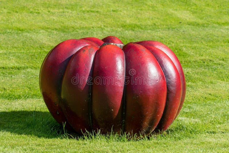 说谎在绿色草坪的大红色南瓜 免版税库存照片