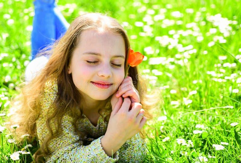 说谎在草,在背景的grassplot的女孩 梦想的面孔的女孩拿着红色郁金香花,享受芳香 孩子享用 免版税库存图片