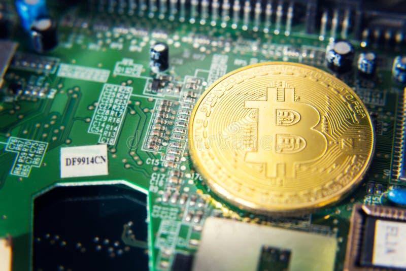 说谎在计算机主板, cryptocurrency采矿概念的金黄bitcoin硬币 库存照片