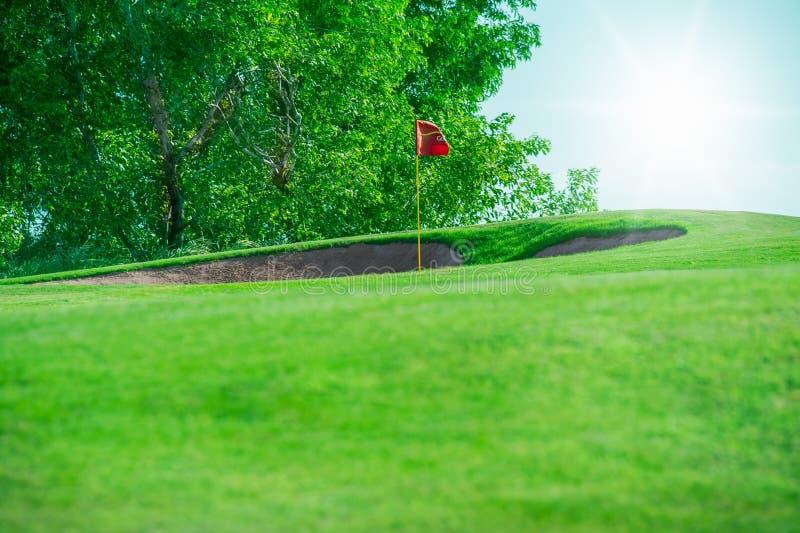 请检查俱乐部高尔夫球例证更多我投资组合炫耀 绿色领域和球在草 库存图片