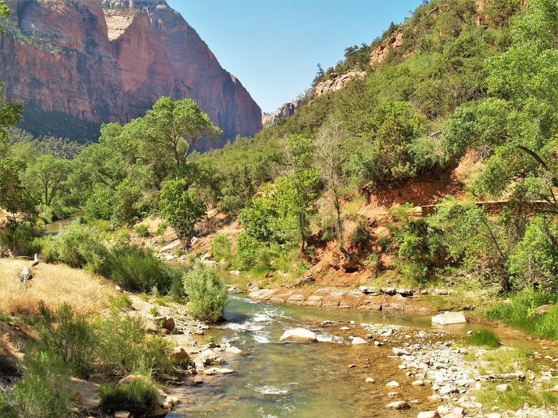 诺思Fork维尔京河在锡安国家公园 免版税库存图片