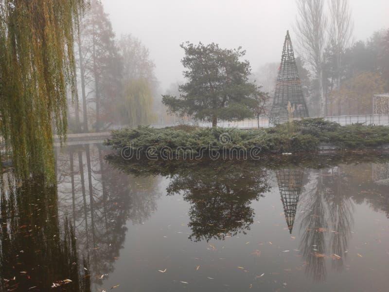 诺维萨德塞尔维亚多瑙河公园池冬季风景 免版税图库摄影