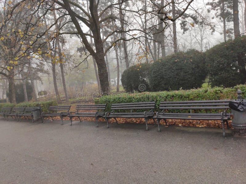 诺维萨德塞尔维亚市中心多瑙河公园冬季风景 免版税图库摄影