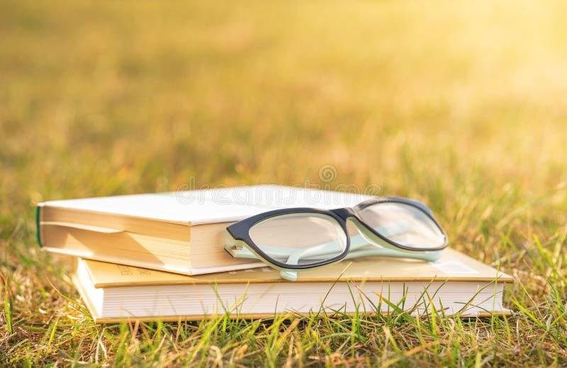 读书本质上 室外休闲读书书 免版税库存照片