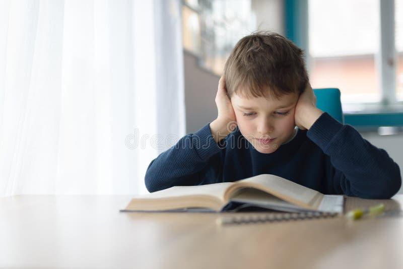 读书的孩子在书桌 库存图片