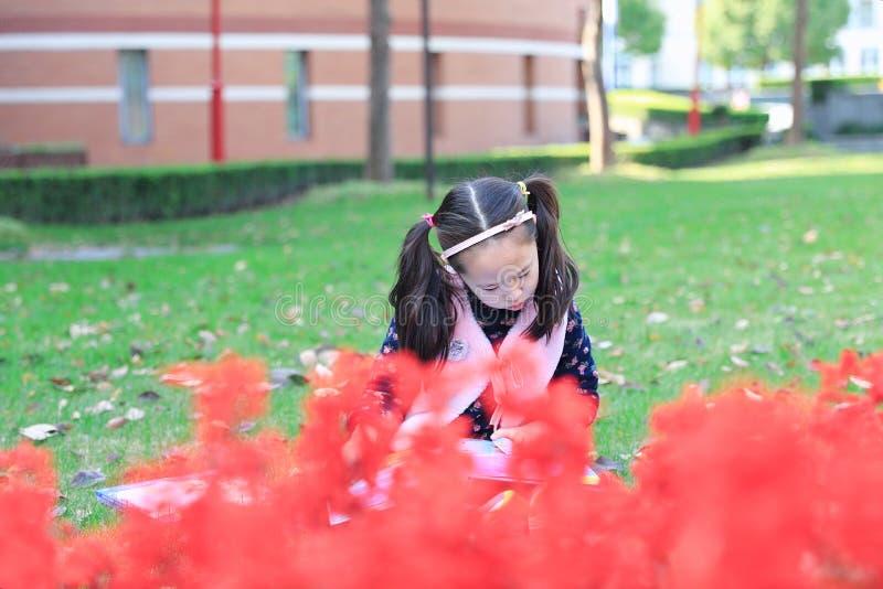 读书的小女孩孩子在草 库存图片