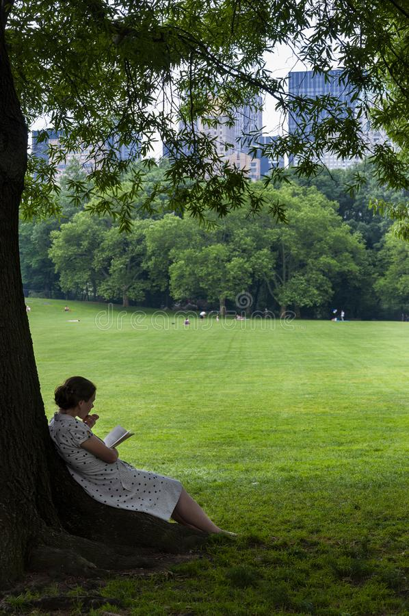 读书的少妇在树下在有纽约地平线的中央公园在背景中,在纽约, 免版税库存图片