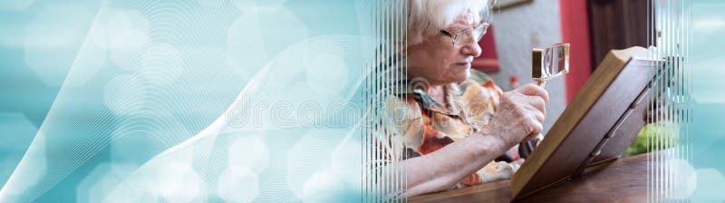 读书的老妇人;全景横幅 库存图片