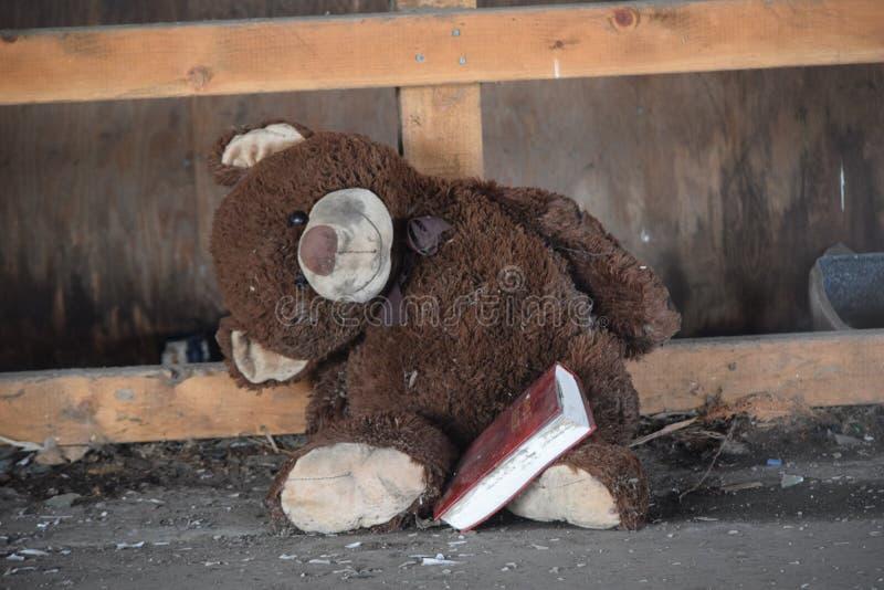 读他的圣经的玩具熊 免版税库存图片