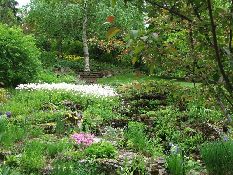 读者假山花园风景 库存图片