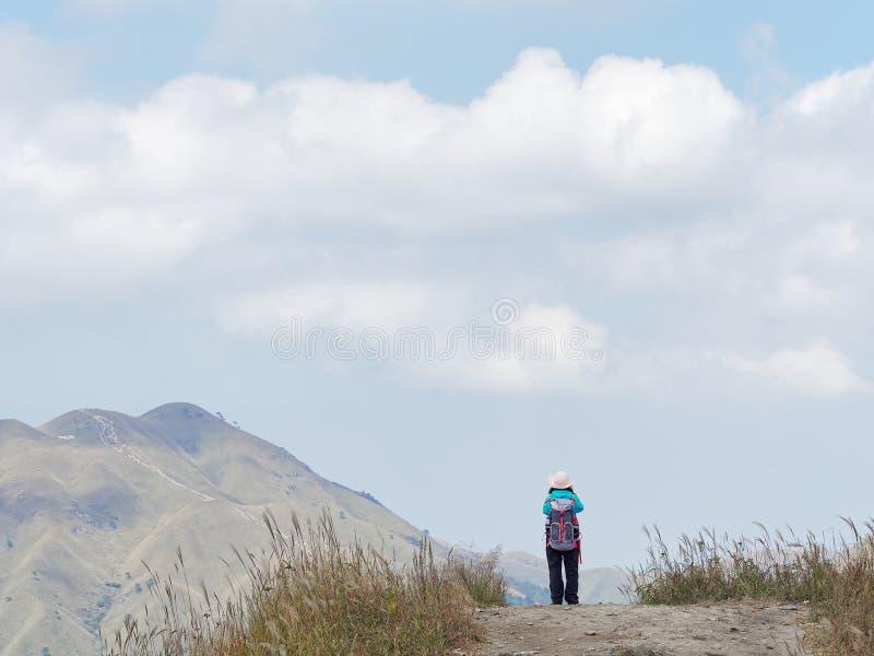 调查妇女立场的山森林背面图风景的山徒步旅行者在山峭壁的上面的 免版税库存图片