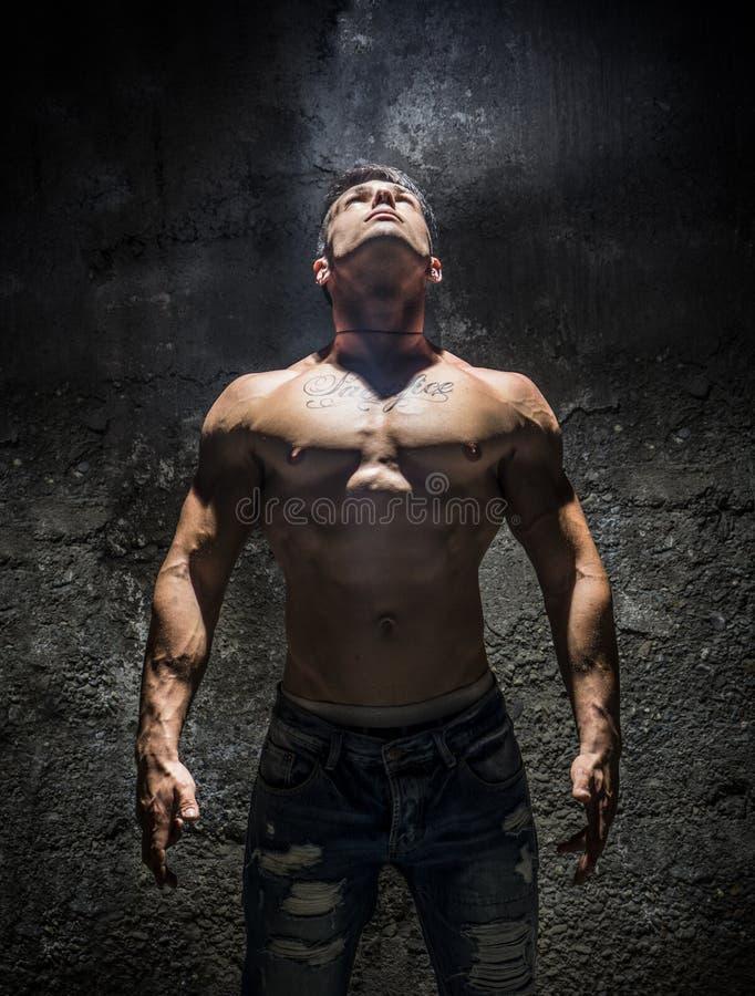 调查明亮的吊灯的赤裸上身的肌肉人 免版税库存图片