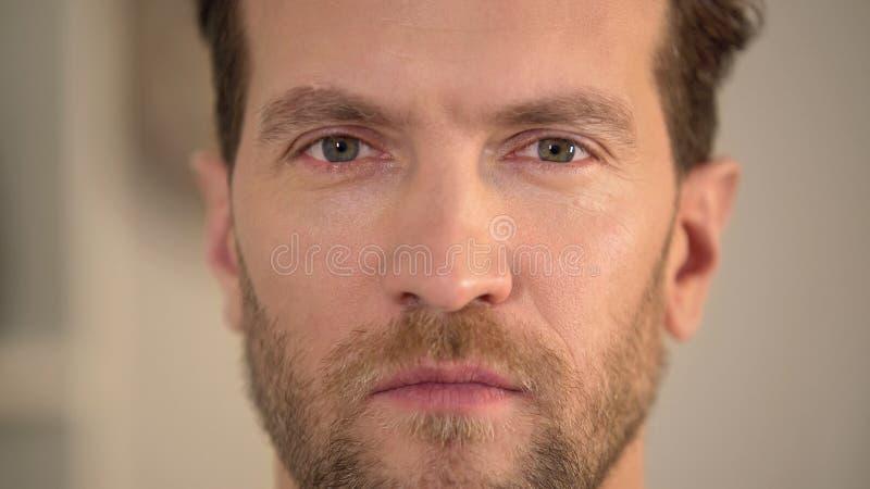 调查照相机,懊恼男性面孔特写镜头,问题的严肃的恼怒的人 免版税库存图片