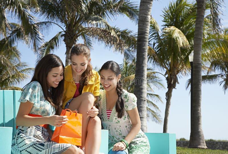 调查购物袋的十几岁的女孩 免版税库存图片