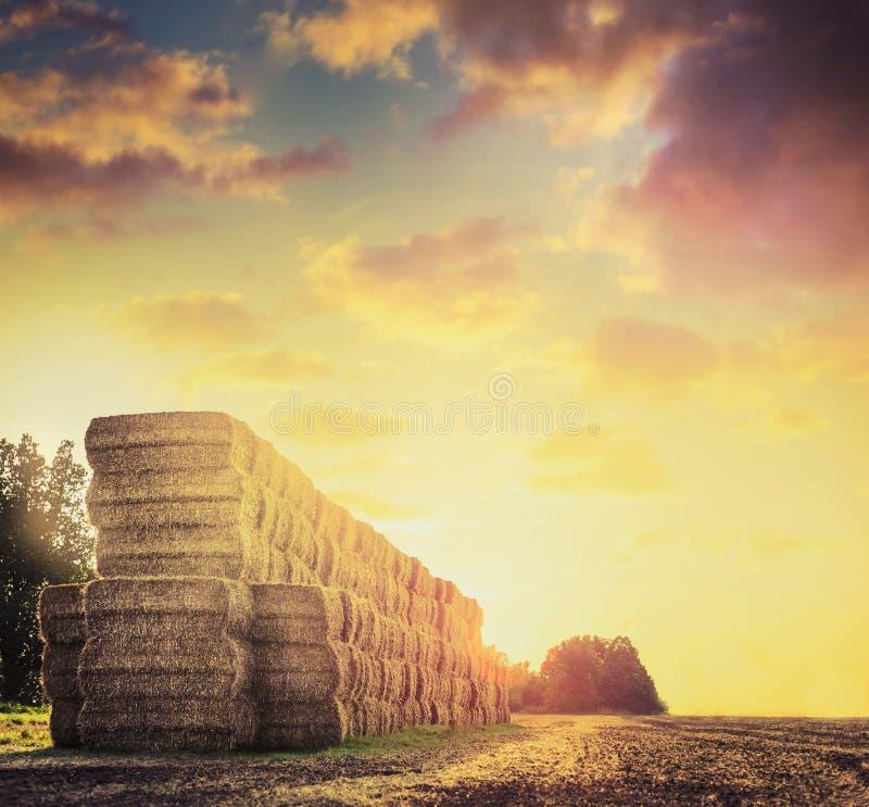 调遣与在美丽的日落天空背景的干草或秸杆大包  免版税图库摄影