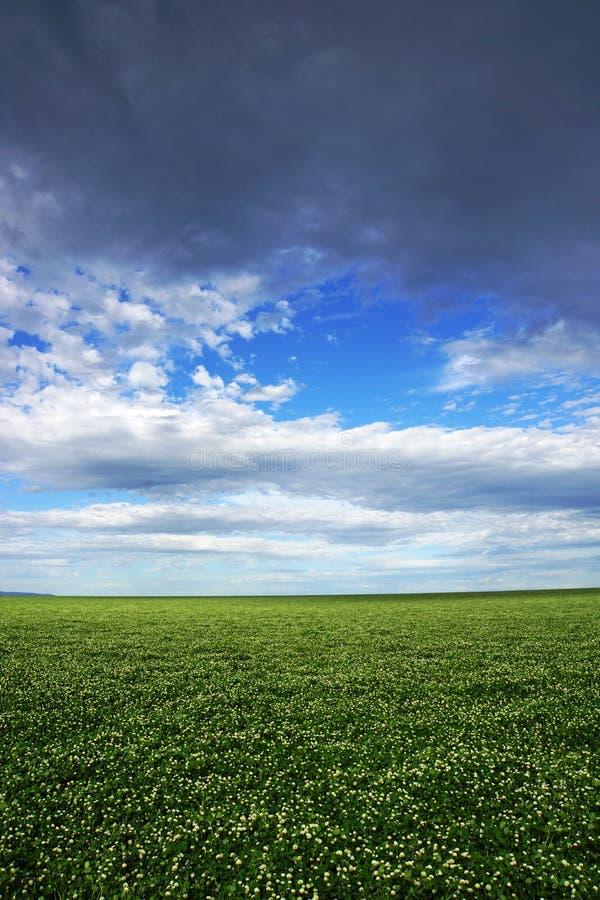 调遣反对天空、农业和农场土地有天空和云彩的在维多利亚,澳大利亚 免版税库存照片