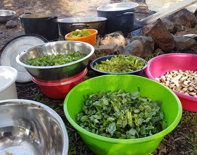 调遣烹调肠的食用植物并且投入火 免版税库存照片
